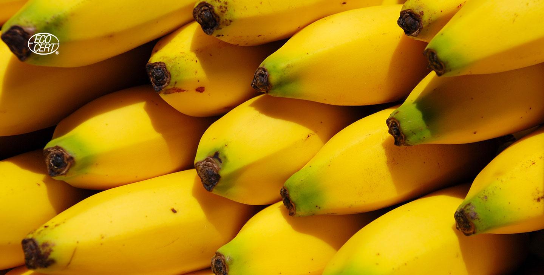 Quasiment la meilleure purée de banane du marché que vous pouvez vous permettre