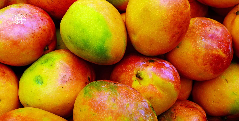 Spécialistes des ingredients de fruits destinés à l'industrie de l'alimentation et de la boisson